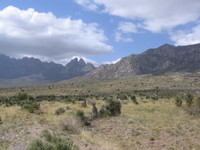Organ_mountains